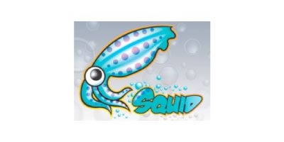 capensis-catalogue-solutions-squid-logo